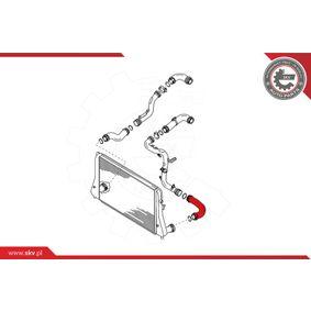 Въздуховод за турбината (24SKV072) производител ESEN SKV за VW Golf V Хечбек (1K1) година на производство на автомобила 10.2003, 105 K.C. Онлайн магазин