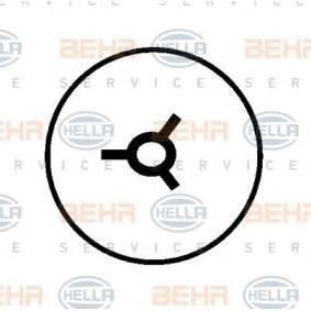 HELLA Kompressor Klimaanlage (8FK 351 127-901)
