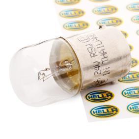 Крушка с нагреваема жичка, светлини на рег. номер (8GA 002 071-241) от HELLA купете