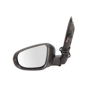 Außenspiegel BLIC Art.No - 5402-01-2002731P kaufen