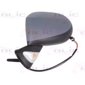 BLIC Außenspiegel 7701069553 für RENAULT bestellen