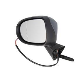 7701069553 für RENAULT, Außenspiegel BLIC (5402-09-2002201P) Online-Shop