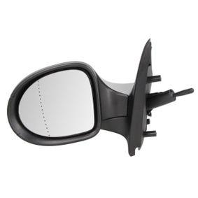 7701067336 für RENAULT, Außenspiegel BLIC (5402-09-2002221P) Online-Shop