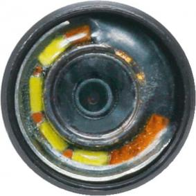 Sonda z kamerą, videoendoskop od KS TOOLS 550.8601 online