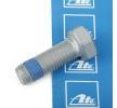 Βίδα, δαγκάνα φρένων για MERCEDES-BENZ E-CLASS (W211) | ATE Προϊόν № 13.8190-0330.1
