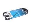 Keilriemen für AUDI A4 (8D2, B5) | DAYCO Art. N. 10A0925C