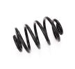 Spiralfeder für AUDI | NK Art. Nr 543904