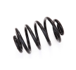Spiralfjäder för RENAULT CLIO II (BB0/1/2_, CB0/1/2_) | NK Art. Nr 543904