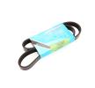 ALFA ROMEO V-Ribbed Belts: MAPCO 261038