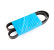 ALFA ROMEO V-Ribbed Belts: MAPCO 261045