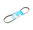 TOYOTA HILUX Pick-up  Courroie trapézoïdale à nervures: MAPCO 240825