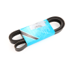 PEUGEOT 206 3/5 portes (2A/C) 1.9 D Courroie trapézoïdale à nervures: MAPCO 261725