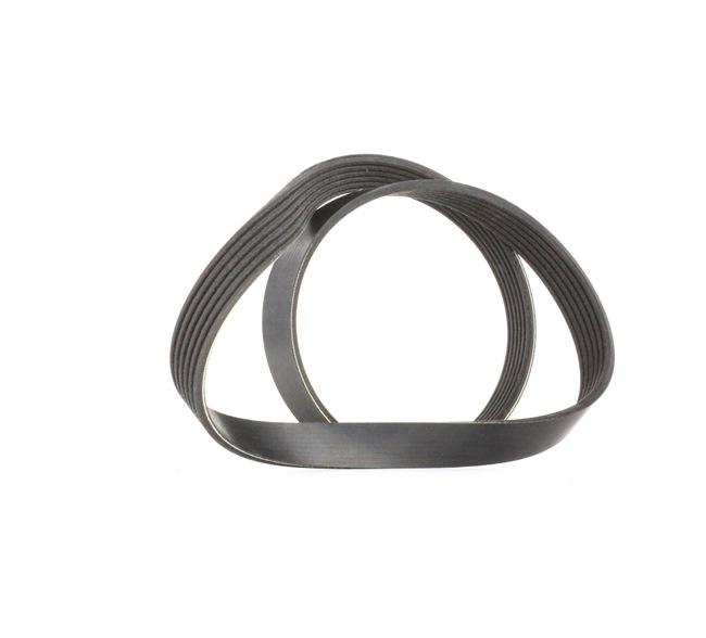 V-Ribbed Belts Length: 1073mm, Number of ribs: 6 with OEM Number 98 054 636 80