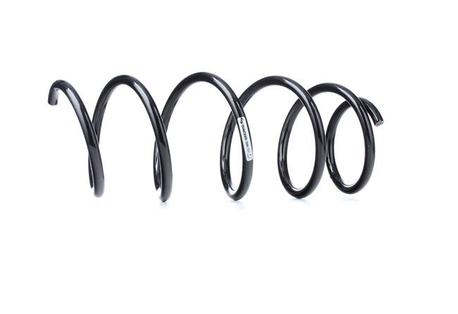 Coil springs SACHS 1234545