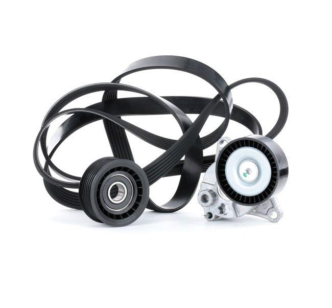 RIDEX 542R0042 Auxiliary belt kit