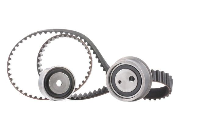 Cam belt kit SKF VKMT95656 Teeth Quant.: 113