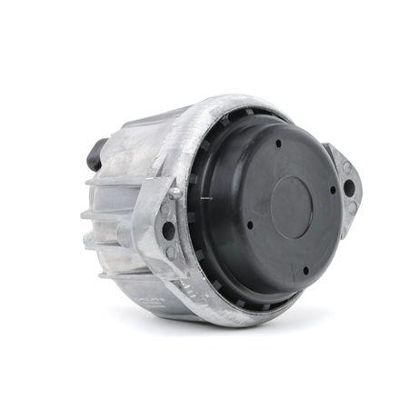 DELPHI TEM099 Engine support mount