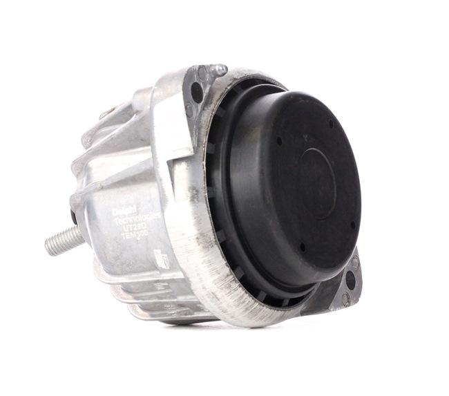 DELPHI TEM100 Engine support mount