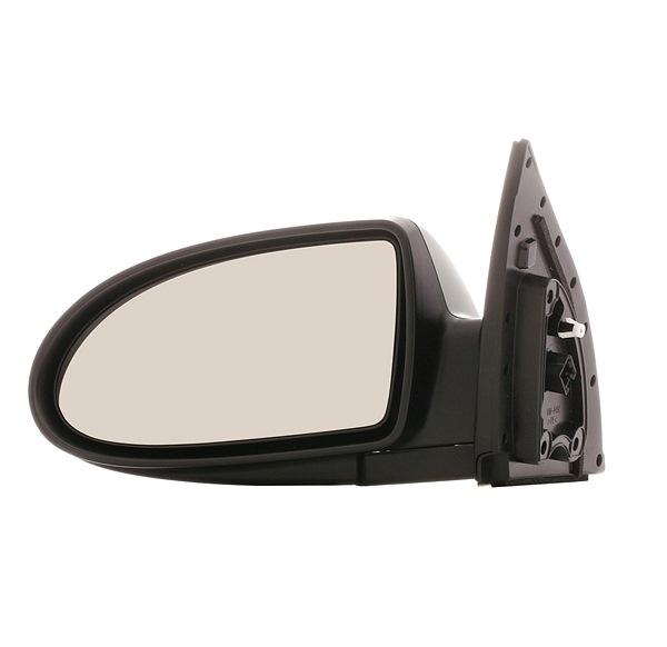 RIDEX 50O0466 Outside mirror