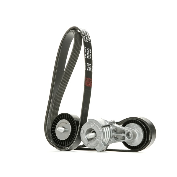OEM RIDEX 542R0088 BMW 1 Series V-ribbed belt kit