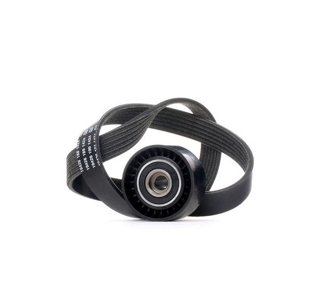 OEM V-Ribbed Belt Set RIDEX 542R0147