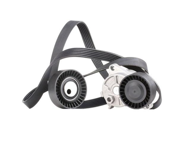 RIDEX 542R0198 Auxiliary belt kit
