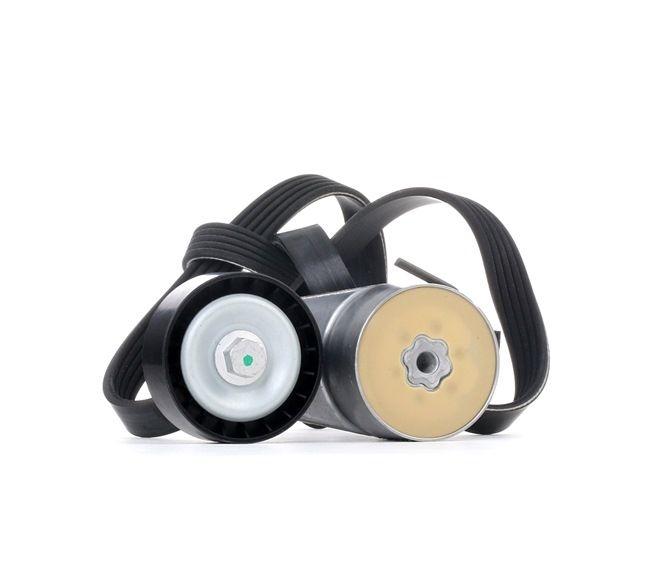 V-Ribbed Belt Set SKRBS-1200342 PUNTO (188) 1.2 16V 80 MY 2004