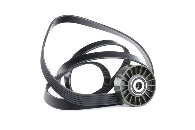 RIDEX 542R0379 Poly V-belt