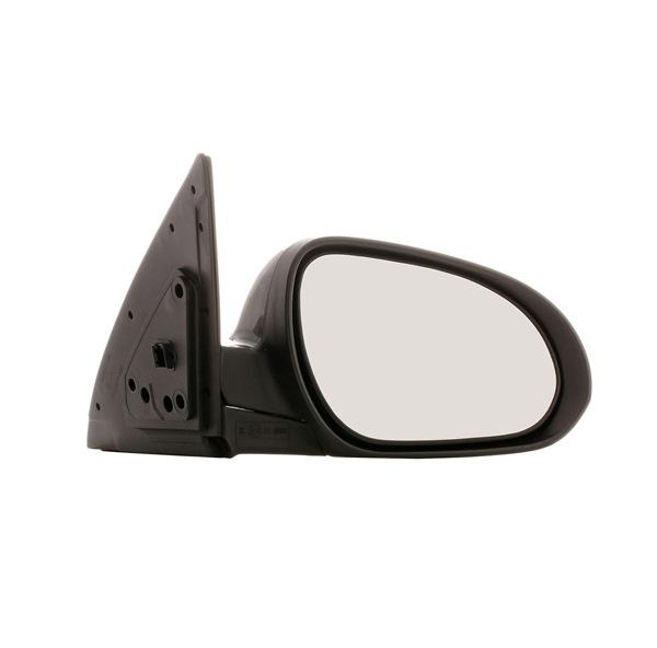 RIDEX 50O0490 Outside mirror