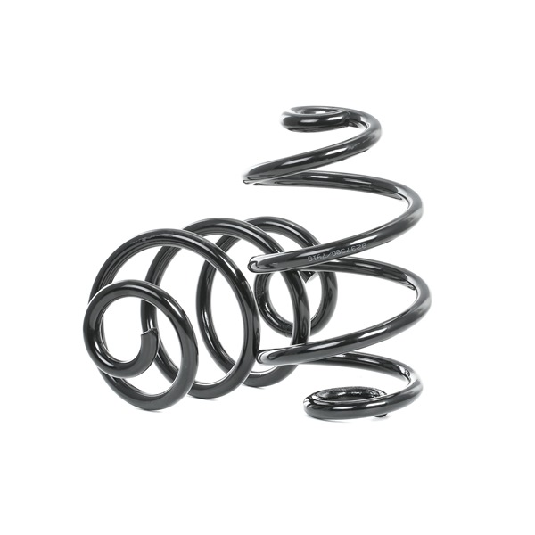 OEM Suspension Kit, coil springs RIDEX 189S0017