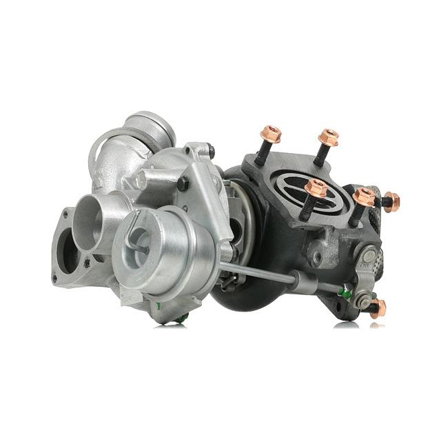 Original RIDEX REMAN 17004755 Turbolader