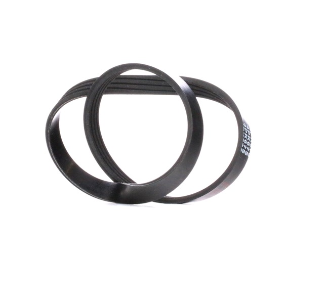 V-Ribbed Belts 28767 PUNTO (188) 1.2 16V 80 MY 2006