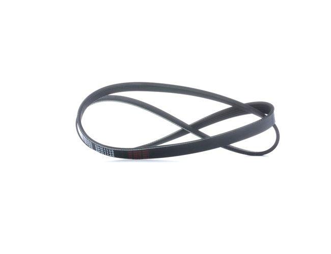 V-Ribbed Belts 28856 PANDA (169) 1.2 MY 2004