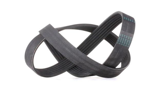 Multi V belt CONTITECH 6PK1007