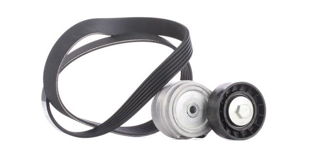 OEM DAYCO KPV038 BMW 1 Series Serpentine belt kit