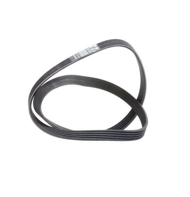 DAYCO 6PK1050S Poly V-belt