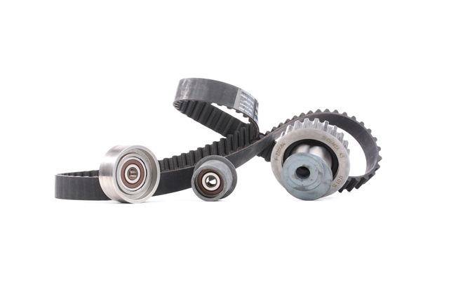 INA 530000710 Timing belt kit