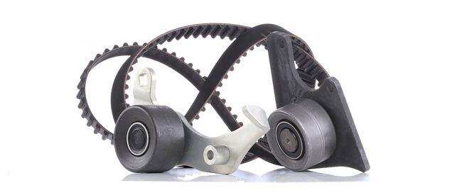 OEM INA 530 0096 10 HYUNDAI i30 Cam belt kit