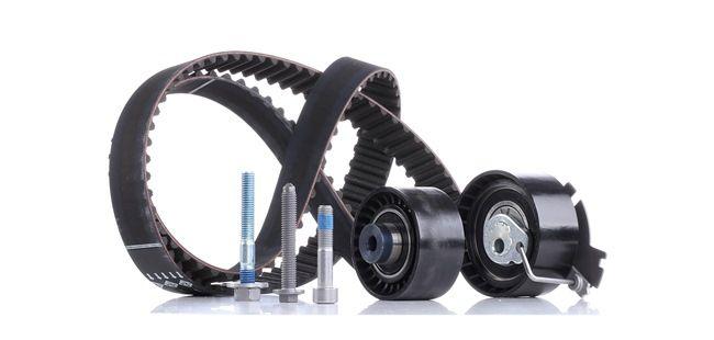 OEM INA 530 0379 10 PEUGEOT 207 Cam belt kit
