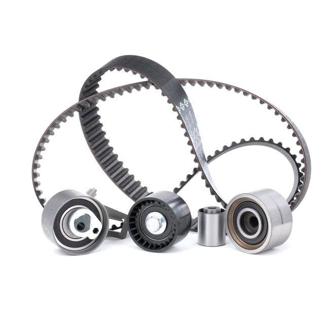 INA 530050910 Timing belt kit