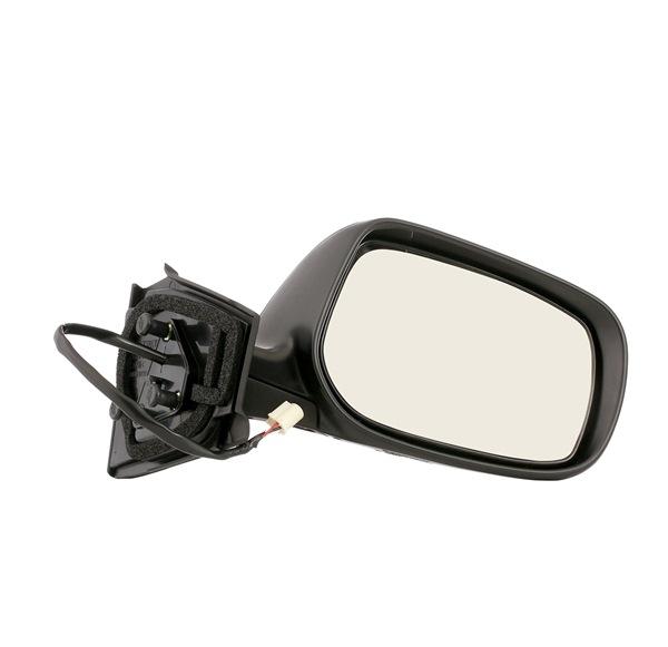 VAN WEZEL 5432806 Outside mirror