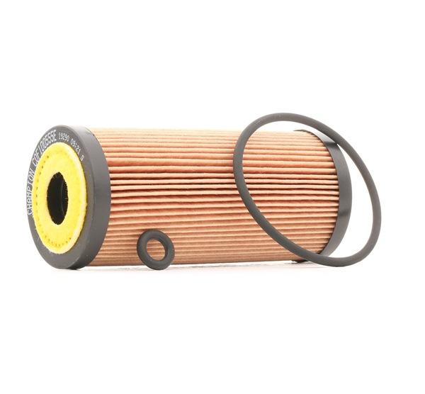 Oil filter CHAMPION COF100555E Filter Insert