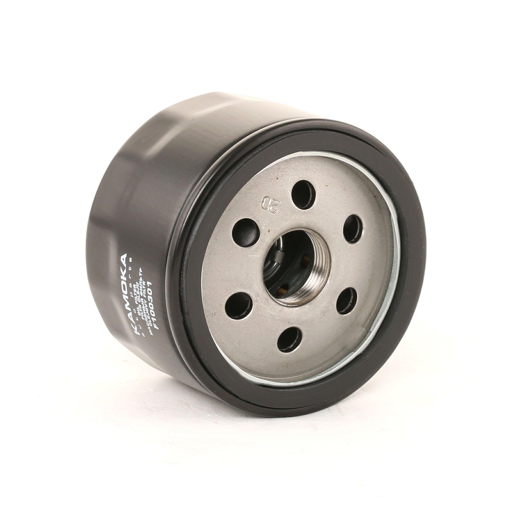 Filter KAMOKA F100301 Bewertung