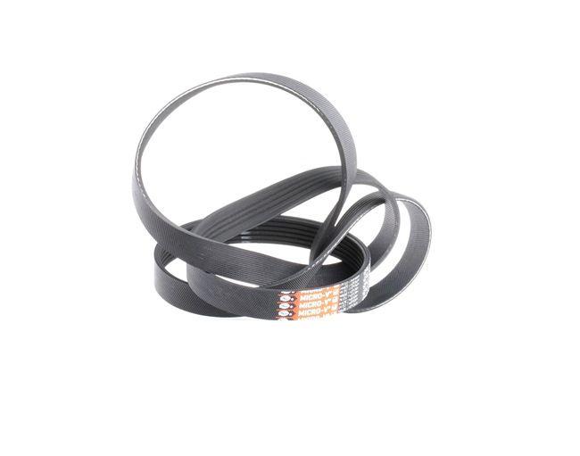 OEM GATES 865310336 VW NEW BEETLE Serpentine belt