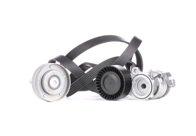 Poly v-belt kit INA 7883053 Check alternator freewheel clutch & replace if necessary