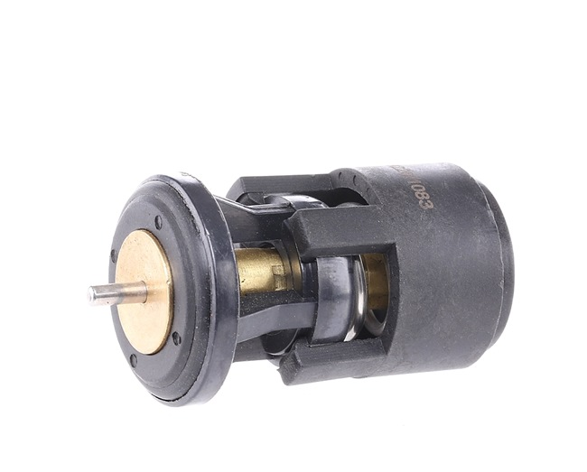 Thermostat, coolant 316T0009 POLO (9N_) 1.4 16V MY 2008