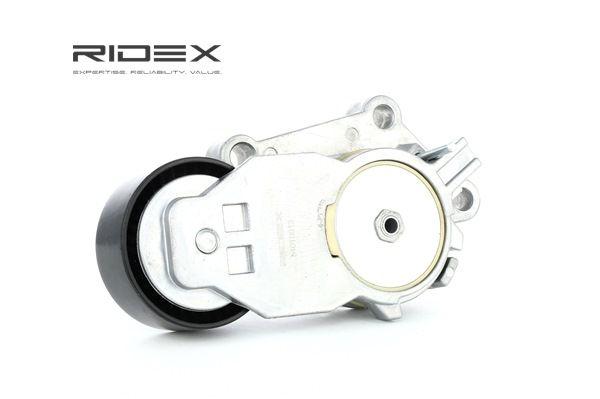 RIDEX 540T0013