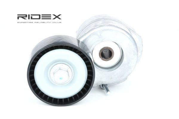 RIDEX 541V0041