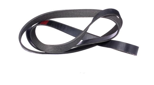 RIDEX Serpentine belt JEEP