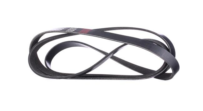RIDEX 305P0101 Poly V-belt